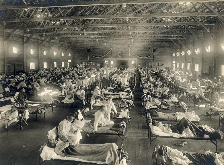 La grippe espagnole